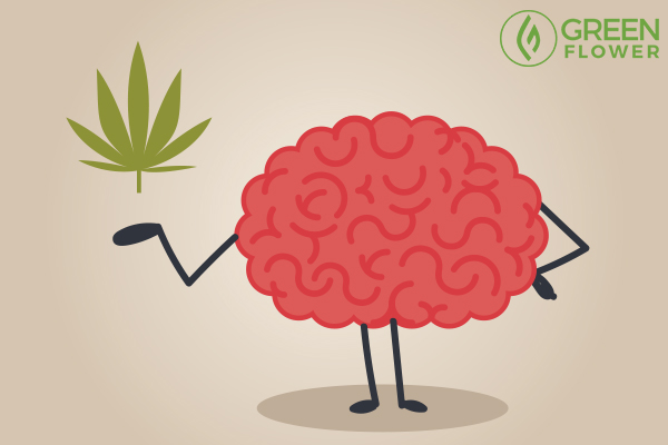 brain and cannabis leaf