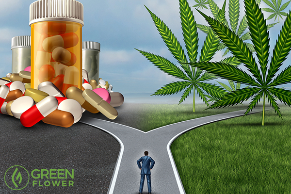 medical cannabis versus medicines