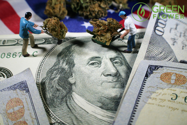 cannabis workers on usa flag and dollar