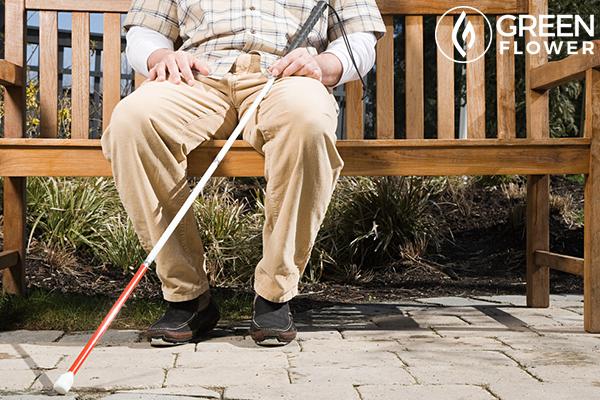 blind man on bench