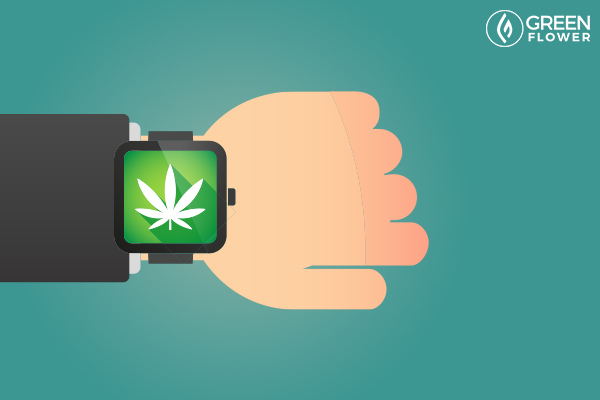 cannabis watch