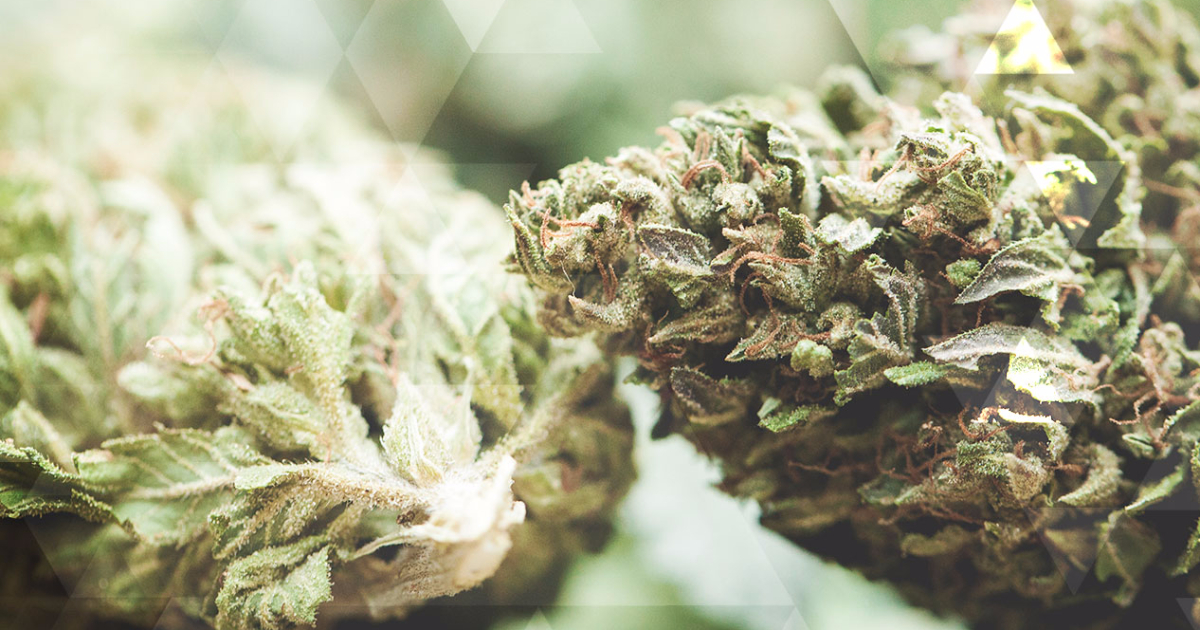 How To Vaporize Cannabis