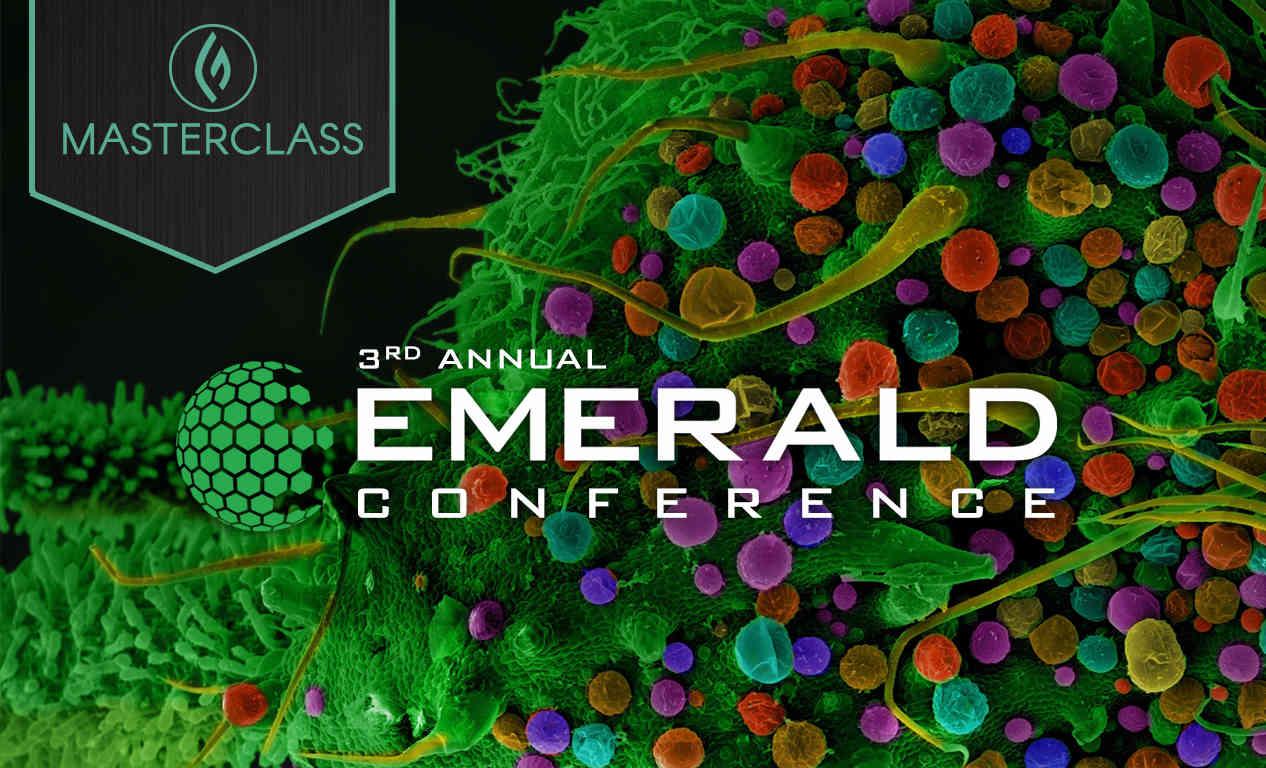 Emerald site image video