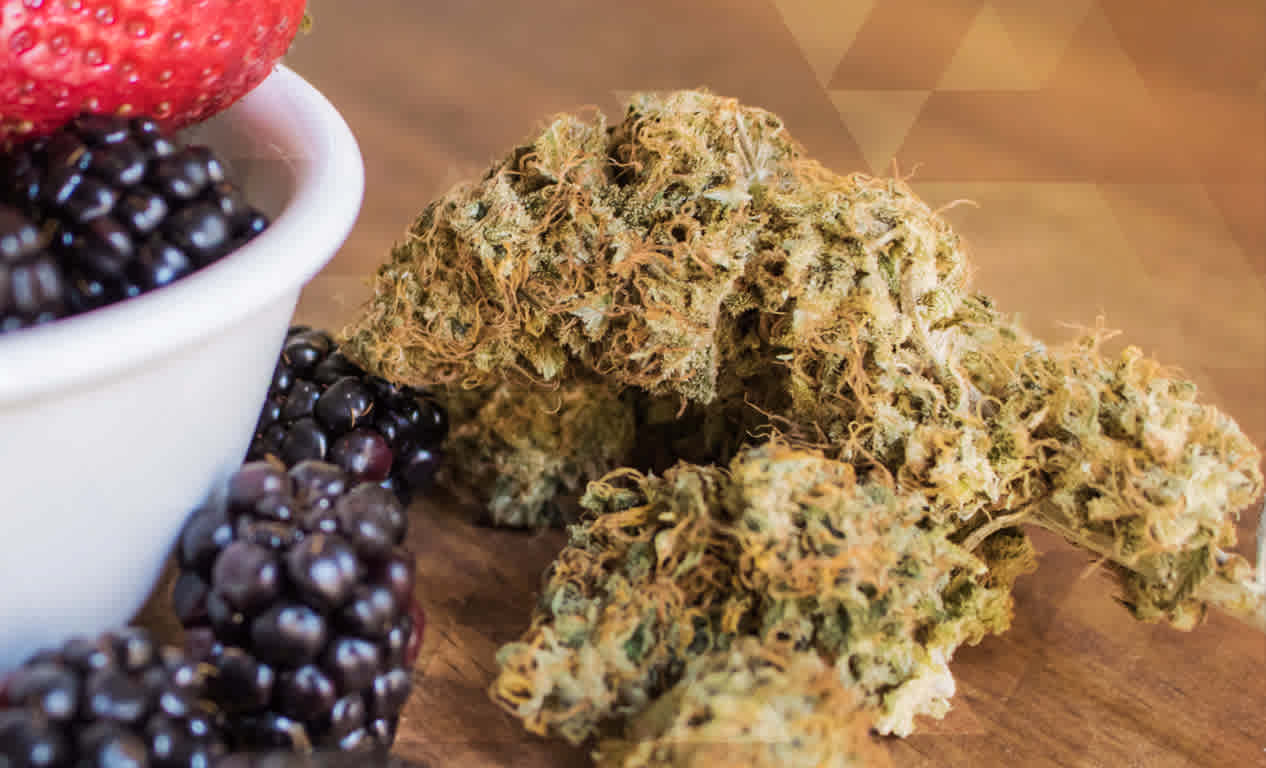 How Nutrition Impacts Medical Cannabis