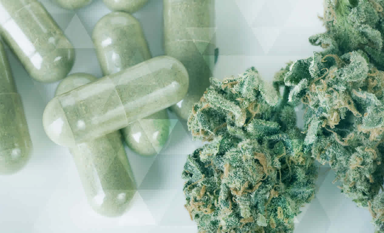 Famous Drug Manufacturer Plans to Replace Opiates with Cannabis